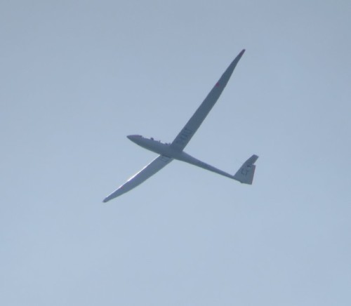 Glider - D-KALT-02