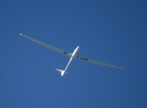Glider - D-KAMK-01