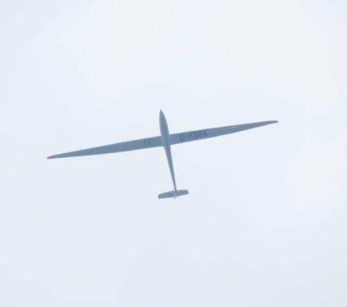 Glider - D-KBFX-01