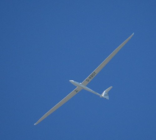 Glider - D-KBGY-01