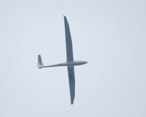Glider - D-KBKD-01