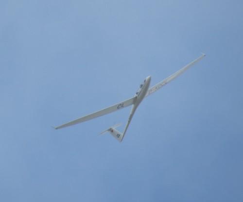 Glider - D-KDCL-03