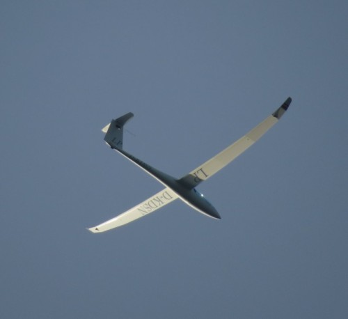 Glider - D-KDSN-05