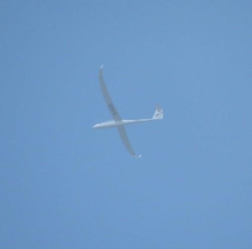 Glider - D-KEIN-01