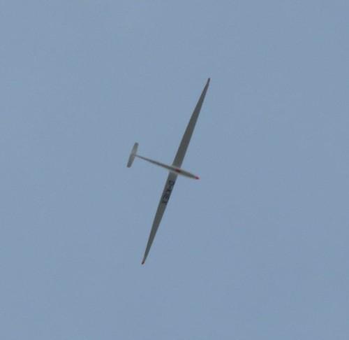 Glider - D-KIEX-01