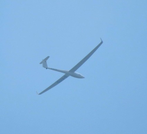 Glider - D-KITO-01