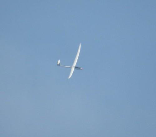 Glider - D-KKCM-01