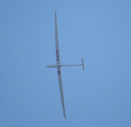 Glider - D-KKCO-03