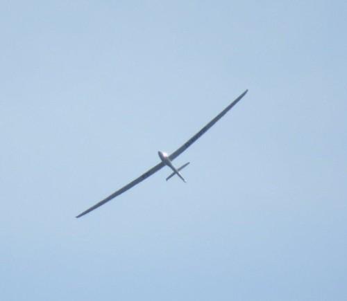 Glider - D-KKFP-03
