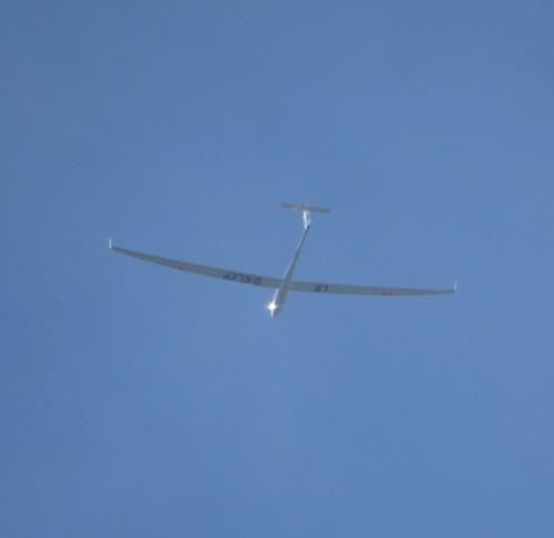 Glider - D-KLEP-01