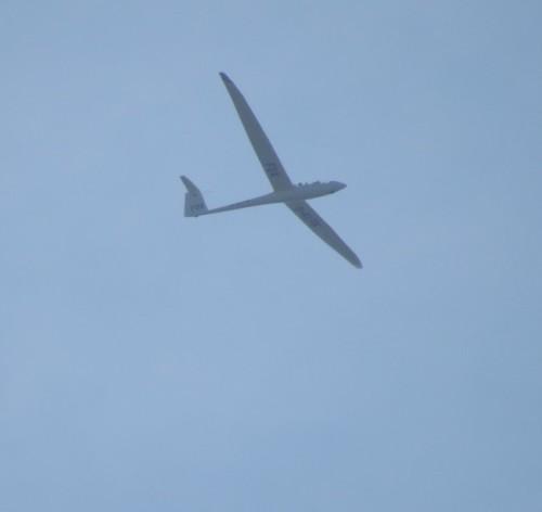 Glider - D-KLFB-01