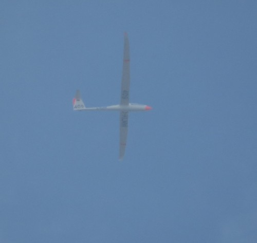 Glider - D-KLMW-01