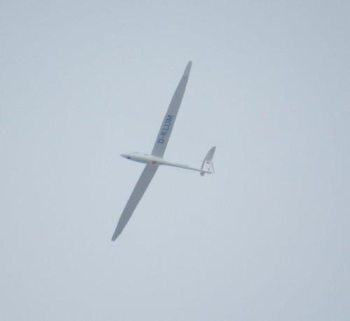 Glider - D-KLUM-03