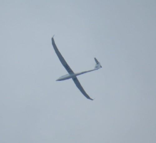 Glider - D-KMEL-01
