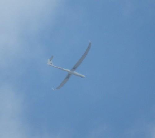 Glider - D-KMEL-02