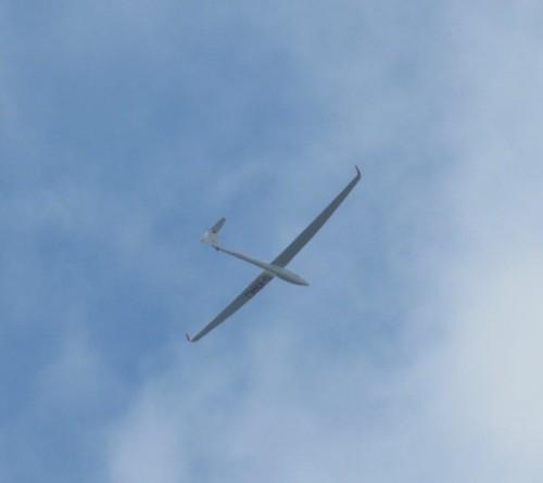 Glider - D-KNKJ-02 (1)
