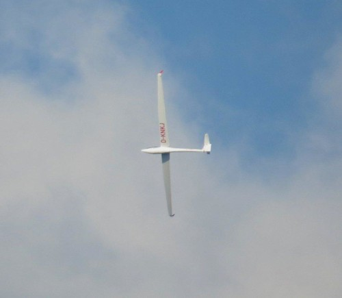 Glider - D-KNKJ-03