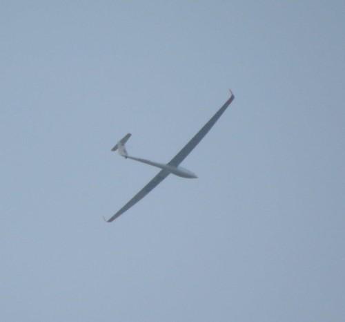 Glider - D-KOCP-01