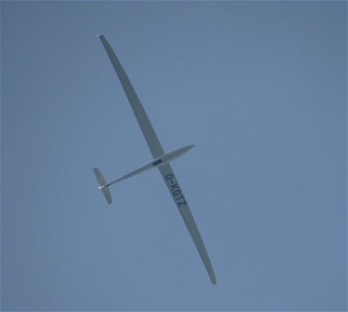 Glider - D-KOTZ-02