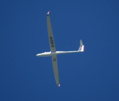 Glider - D-KOYF-01