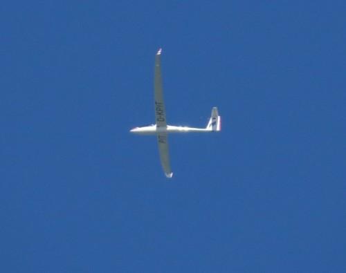 Glider - D-KPIT-01