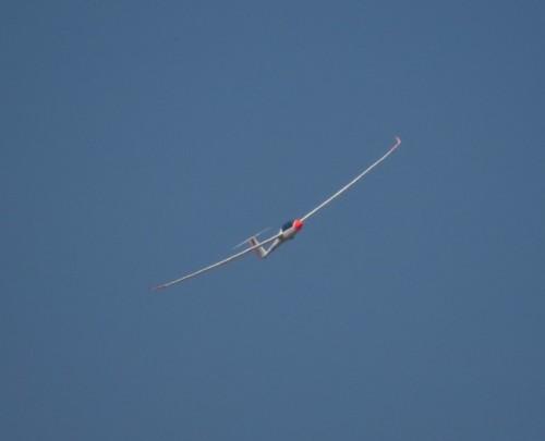 Glider - D-KSAP-01