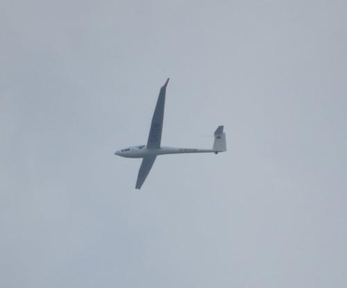 Glider - D-KTCW-02
