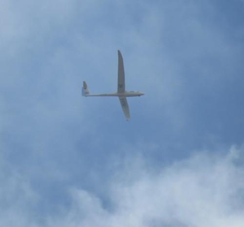 Glider - D-KTDH-05