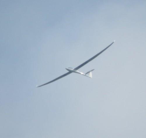Glider - D-KTVX-01