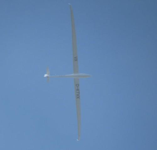 Glider - D-KTVX-04