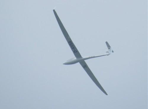 Glider - D-KVSA-01