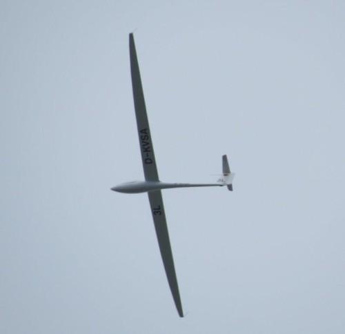Glider - D-KVSA-03