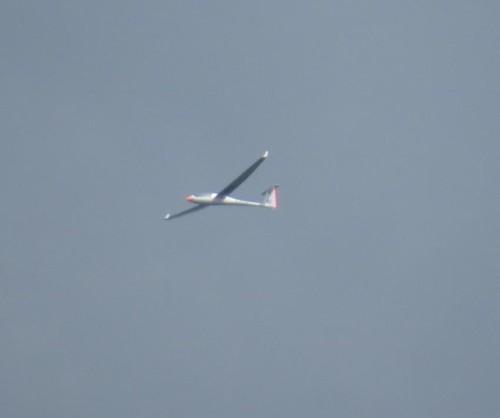 Glider - D-KVSK-01