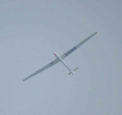 Glider - D-KWCB-01