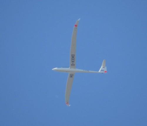 Glider - D-KXMO-03