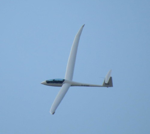 Glider - D-KXMO-09