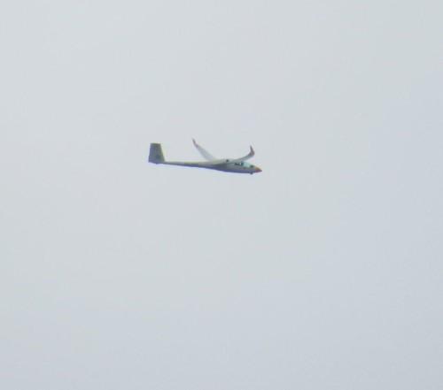 Glider - PH-1403-02