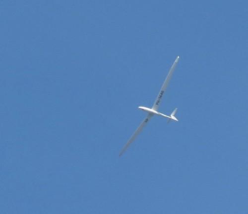 Glider - PH-1446-01