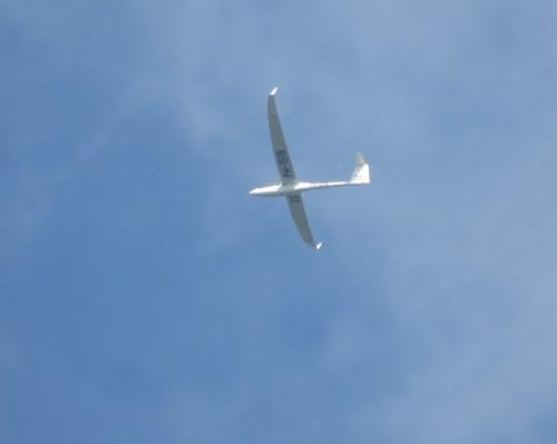 Glider - PH-1519-01
