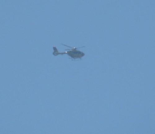 ADAC air rescue - D-HXCA - 01