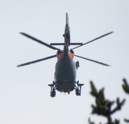 Bundeswehr (Germany) - H145 LUH SAR - 02