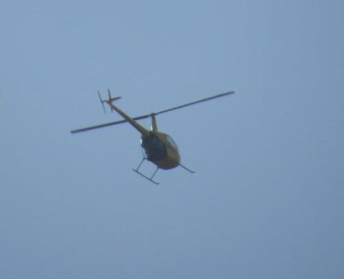D-HALW - Air Lloyd - 01
