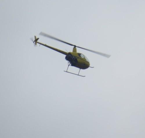 D-HALW - Air Lloyd - 02