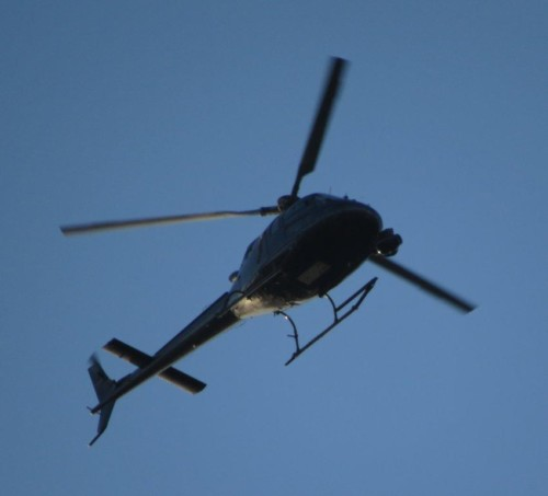 D-HKMG - KMN Helicopter - 01