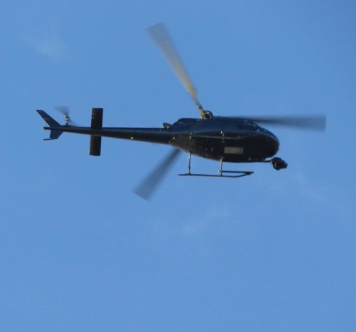 D-HKMG - KMN Helicopter - 02