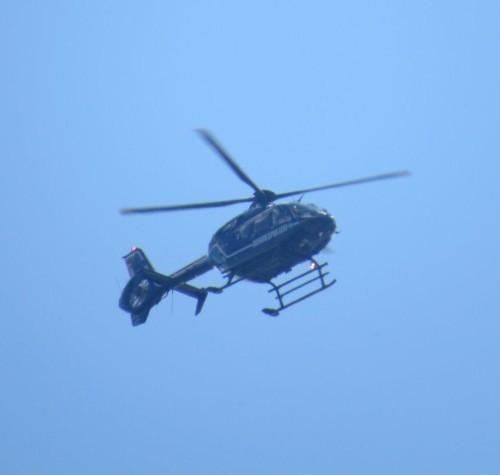 FederalPolice (Germany) - D-HVBS - 01