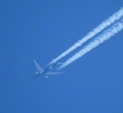 AirNewZealand02