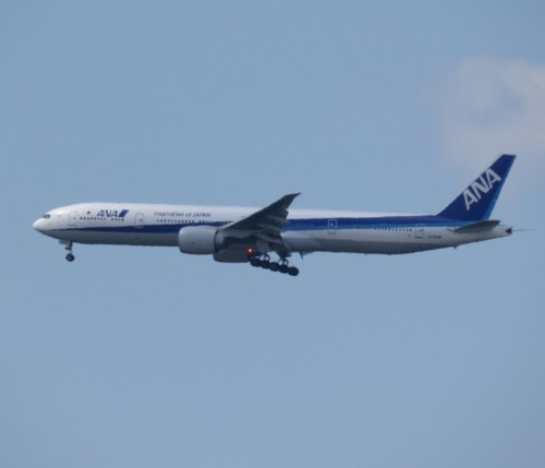 AllNipponAirways07