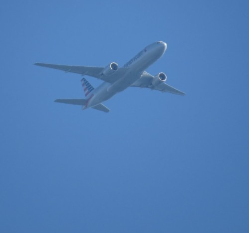 AmericanAirlines03