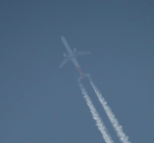 GreatDaneAirlines02